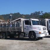 Caminhão de frota